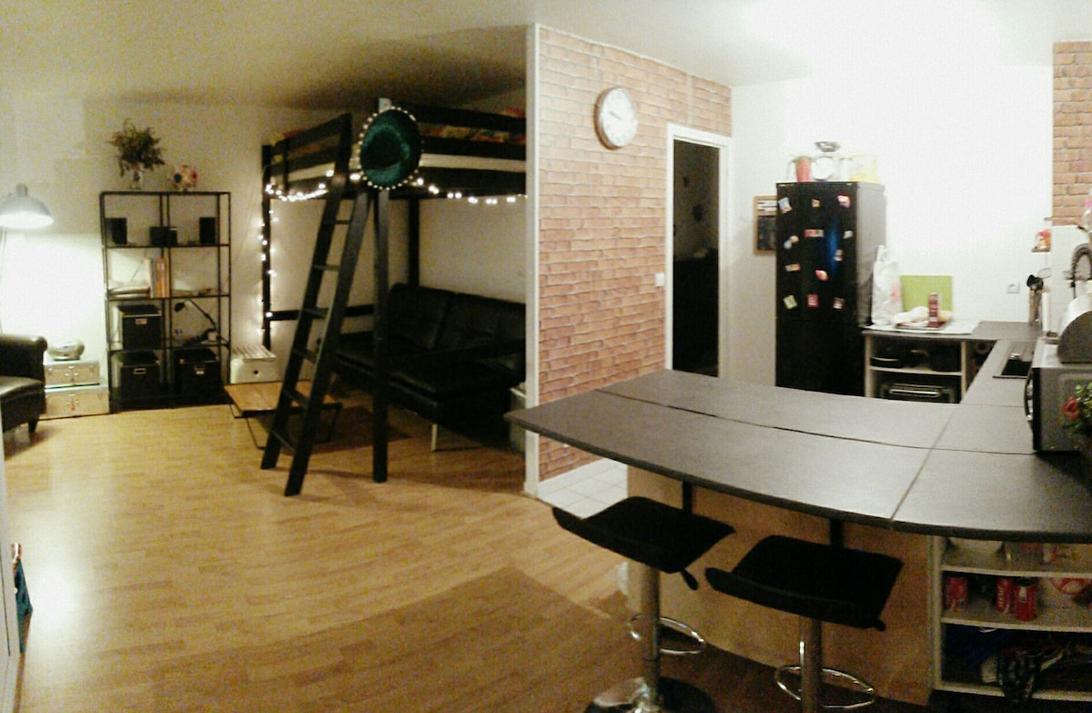 Charmant studio de 37m2 style N.Y