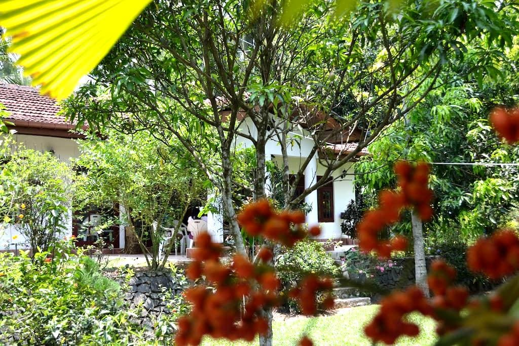 Diyagal Villa Pinnawala: Groups - Rambukkana - House