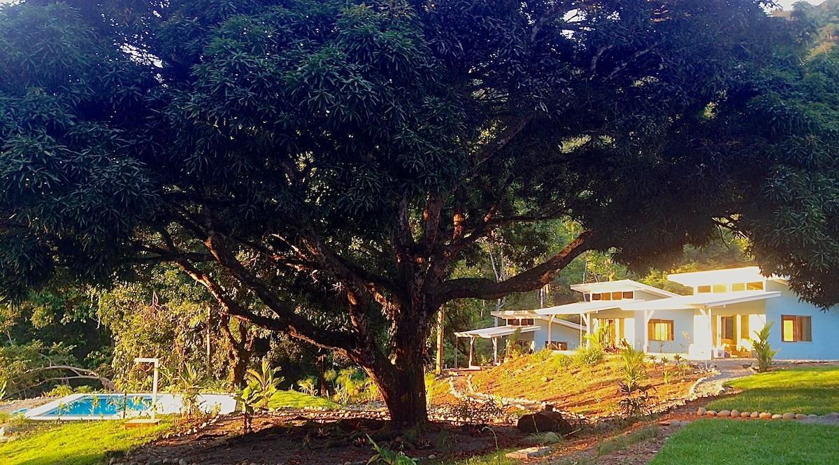 Ocean View Tree of Life Estate