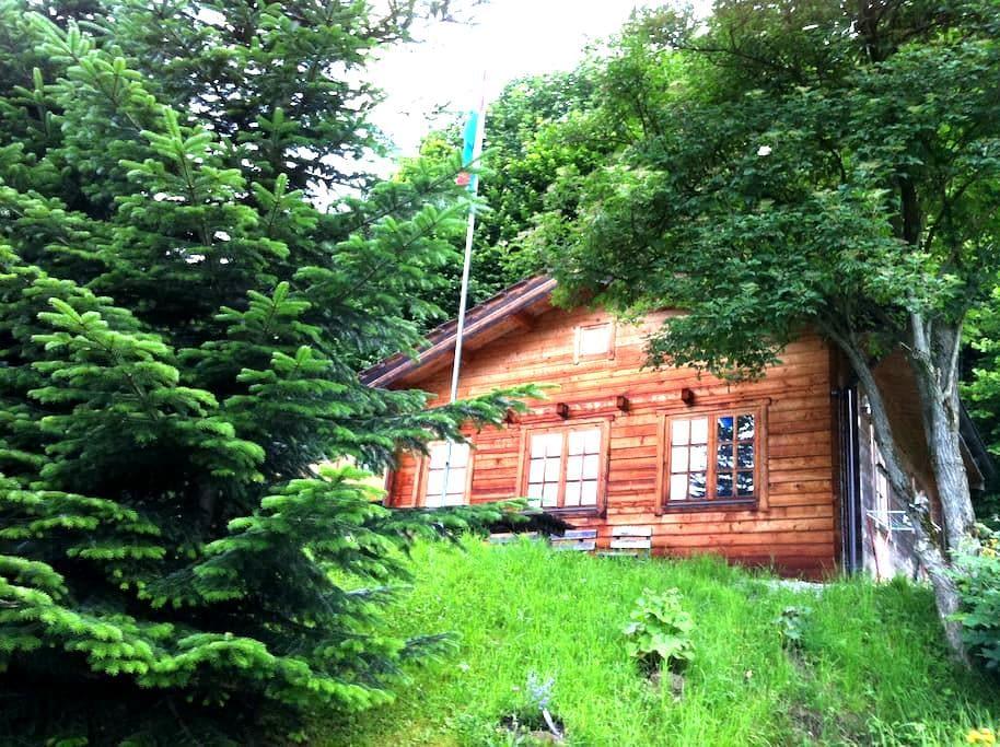Idyllische Blockhütte in der Natur - Altstätten - Chatka w górach