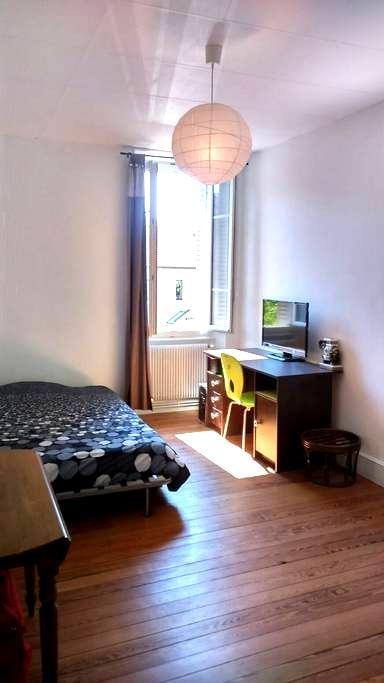 chambre dans bel appartement - Seyssel - Apartment