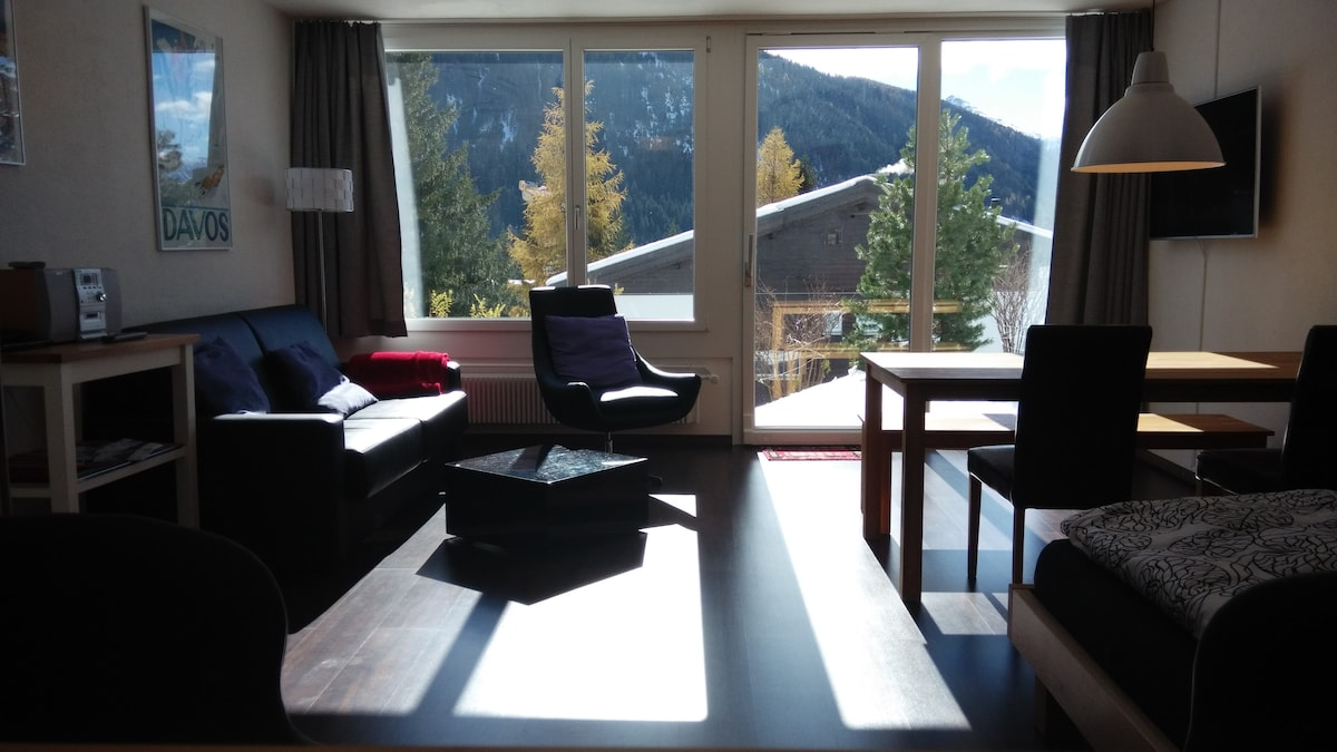 Modern apartment in snowy Davos