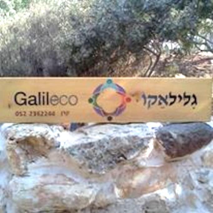 Galileco - Hararit - Lägenhet