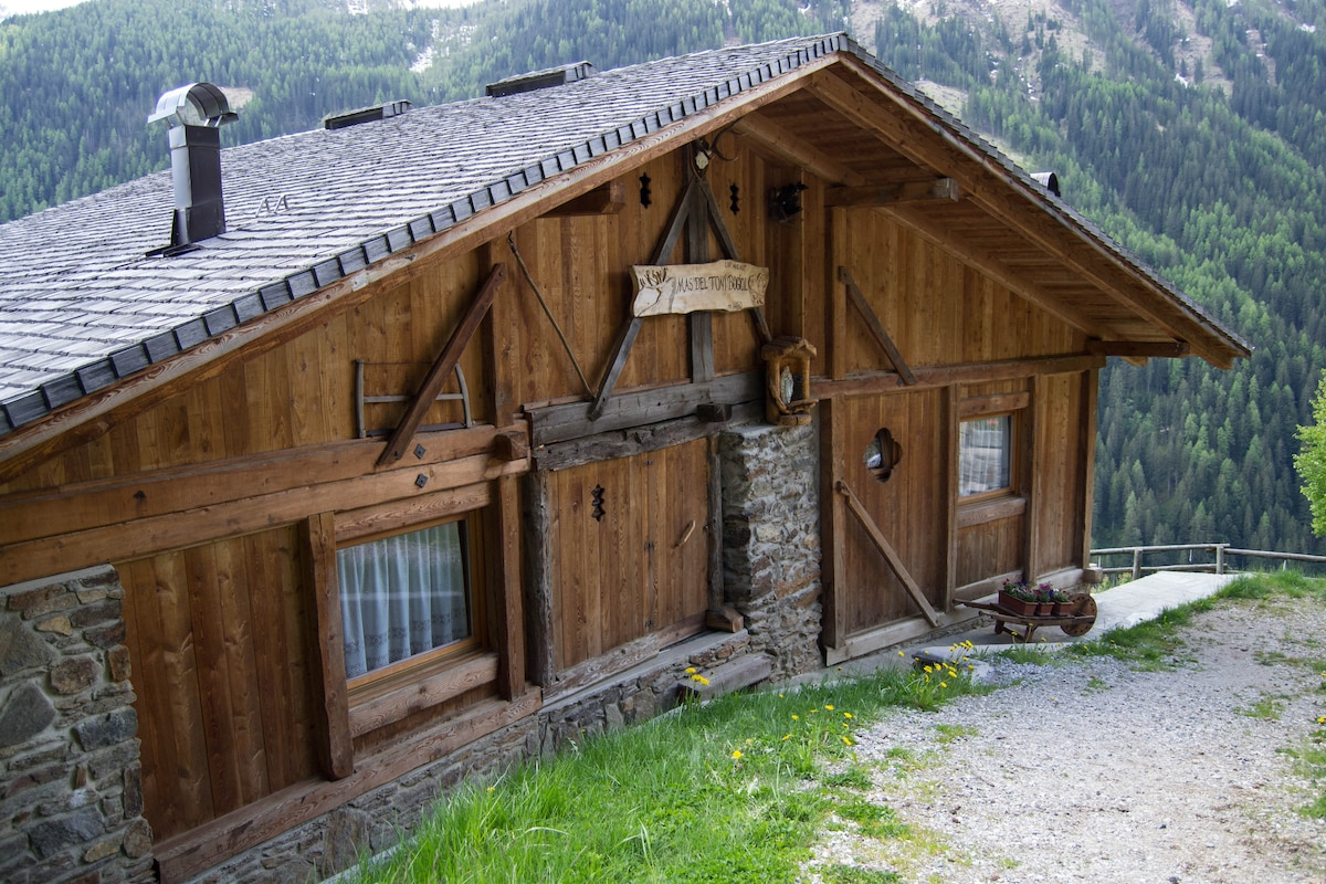 Mas del Toni  Chalet di Montagna