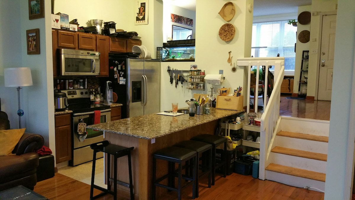 Full Townhouse near Fenway and JP!