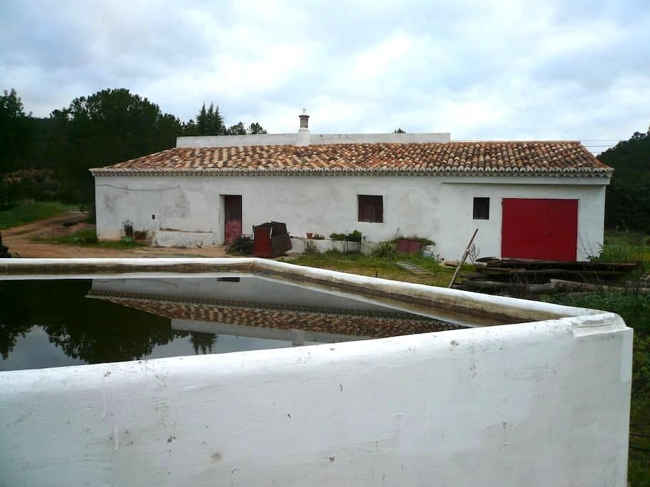 Renewed old house on a 12 acre organic orange farm - Silves