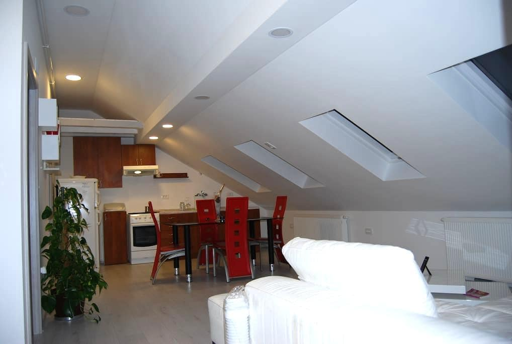 Beautifull,cozy apartament just for you!!! - Zagreb - Apartment