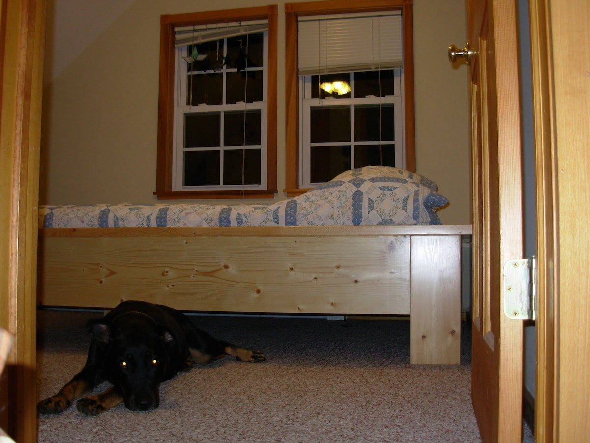 upstairs bedroom, animals really are almost never in that room