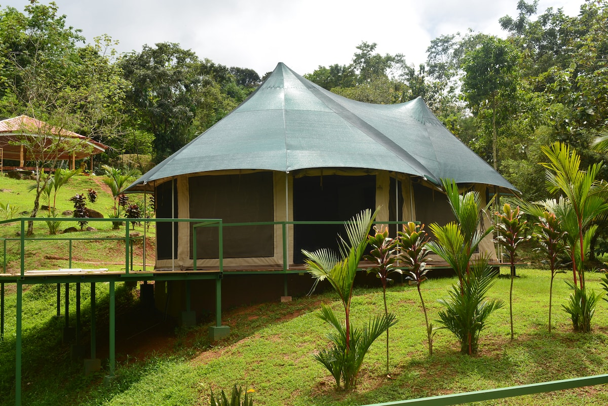 Luxury camping in Uvita