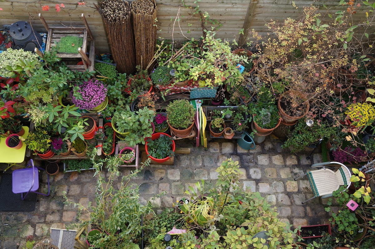 vue sur mon jardin privé - view on my private garden