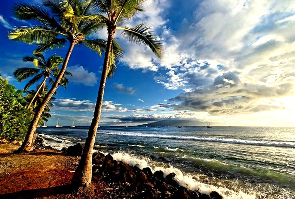 Moana Lani B&B-Ocean View Suite Rm4 - ลาไฮน่า - ที่พักพร้อมอาหารเช้า