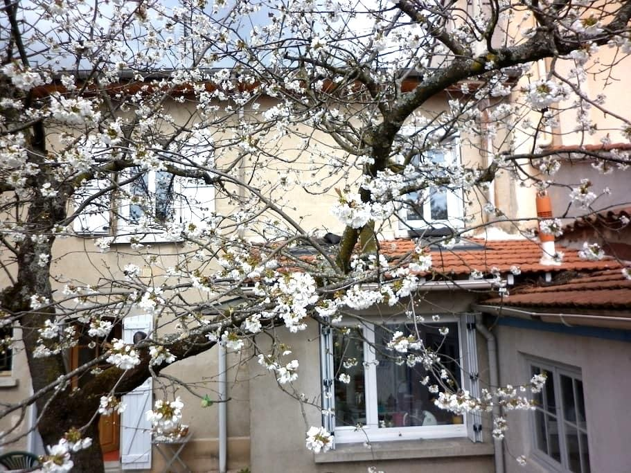 Maison de ville dans la verdure - Andrézieux-Bouthéon - Bed & Breakfast