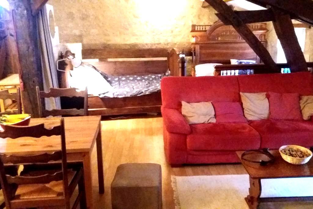 Cosy family accommodation - Aubeterre-sur-Dronne - Apartamento
