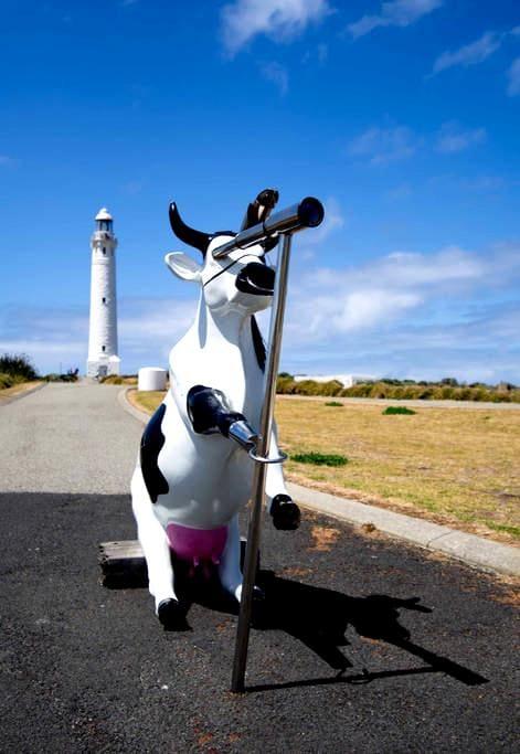 ++DO NOT EDIT++ Cow Lighthouse !FAKE LISTING! - Jordan Valley