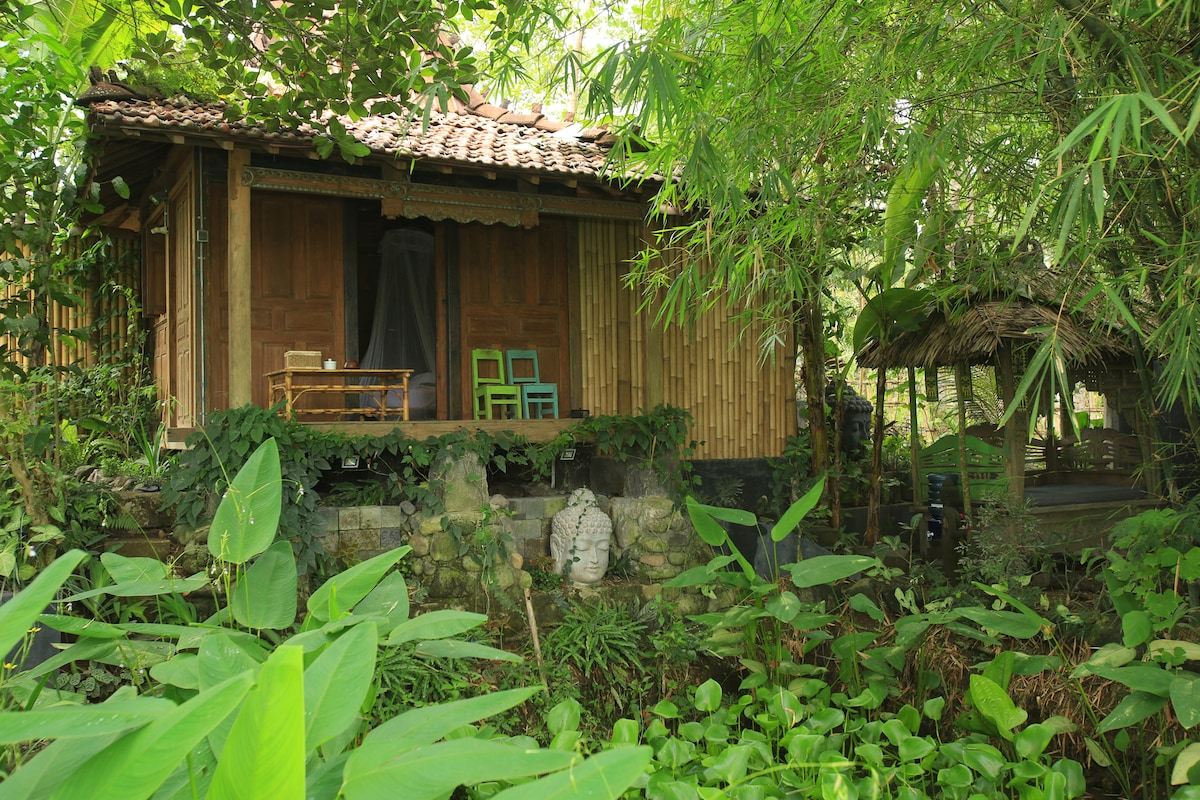 Wooden house at the rice fields