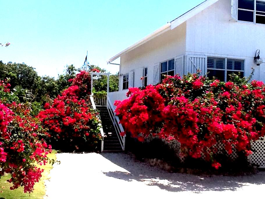 It is always Summer in this house!  - Elbow Cay