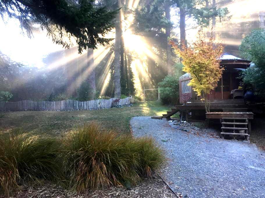 Redwood Park Yurt - Arcata