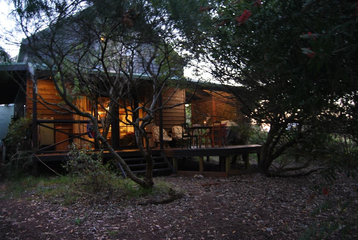 Black Rabbit Cabin in the trees