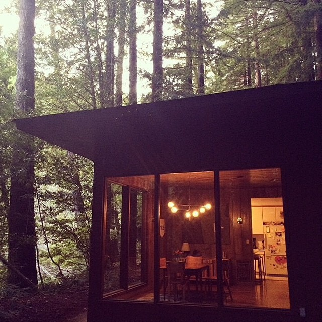 Rustic Modern in the Woods