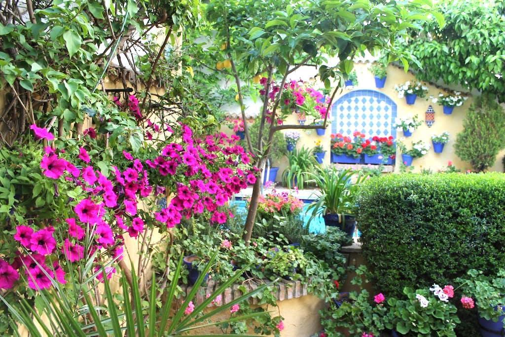 Habitación privada en Casco Histórico - Cordova - Casa