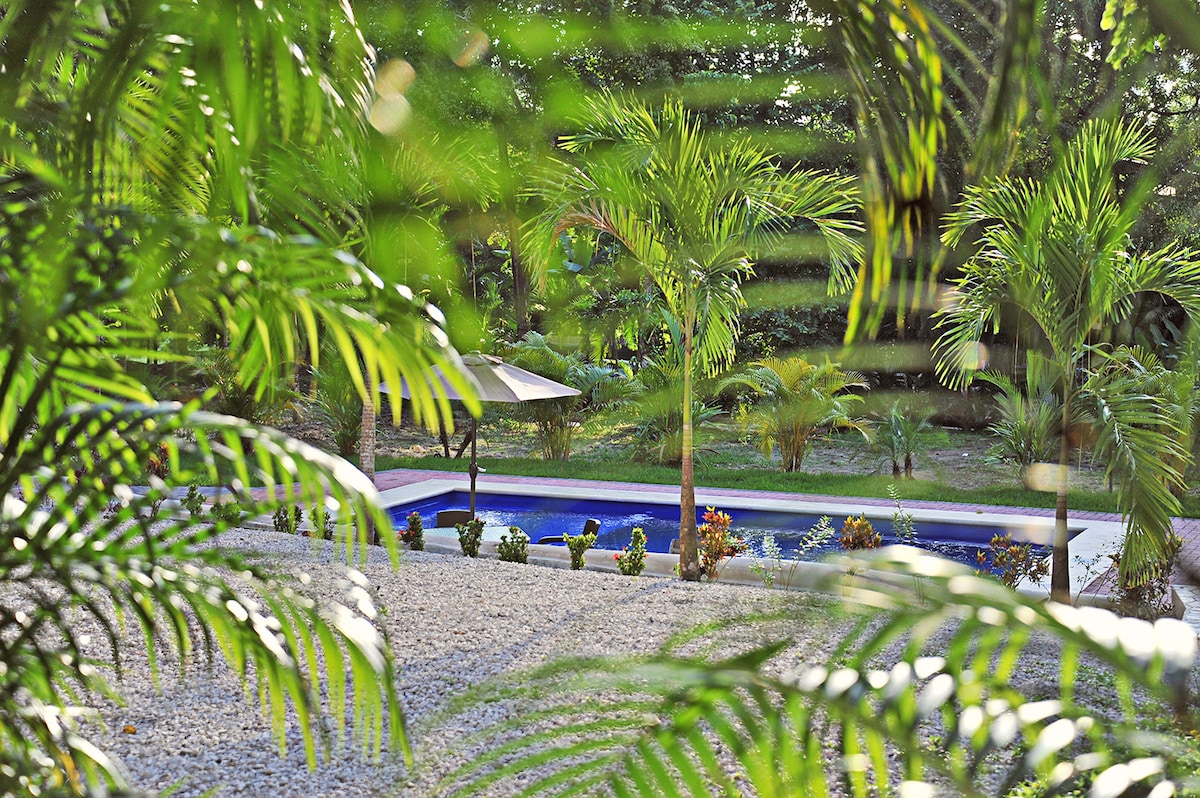 The tropical swimming pool...  the perfect spot to relax.