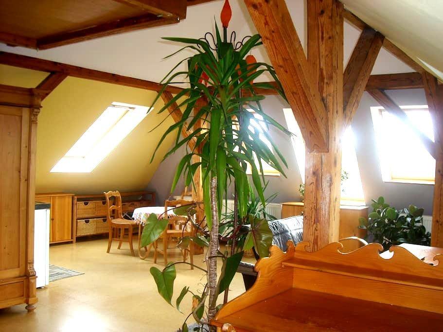 Dachstudio: idyllisch & citynah - Greifswald - House