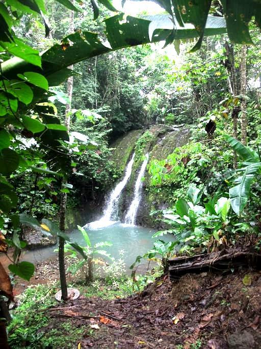 AmapolaBnB - Your Caribbean Retreat - Siquirres