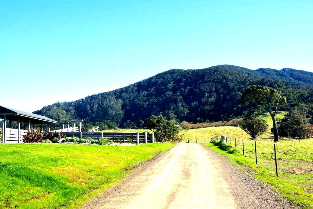 Mountain View Farm - Palm Cottage - Tilba Tilba - Apartament