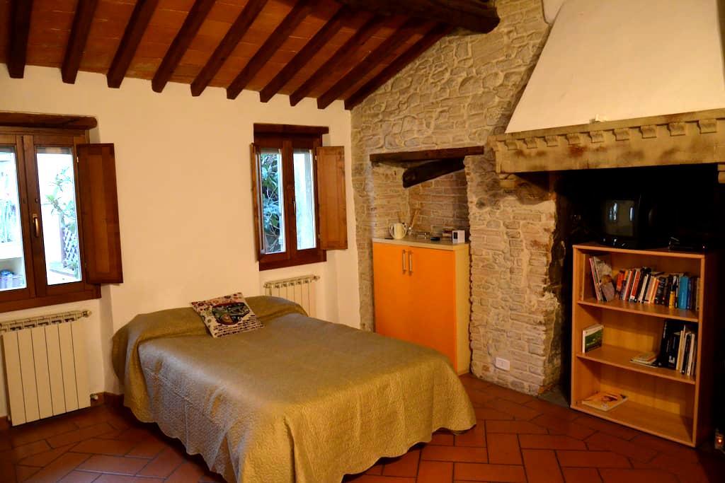 DOWNTOWN NEST - Arezzo - Loft