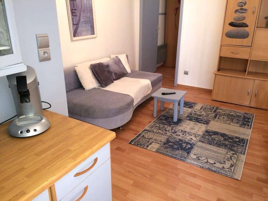 appartement au cœur albertville 12 - Albertville - Departamento