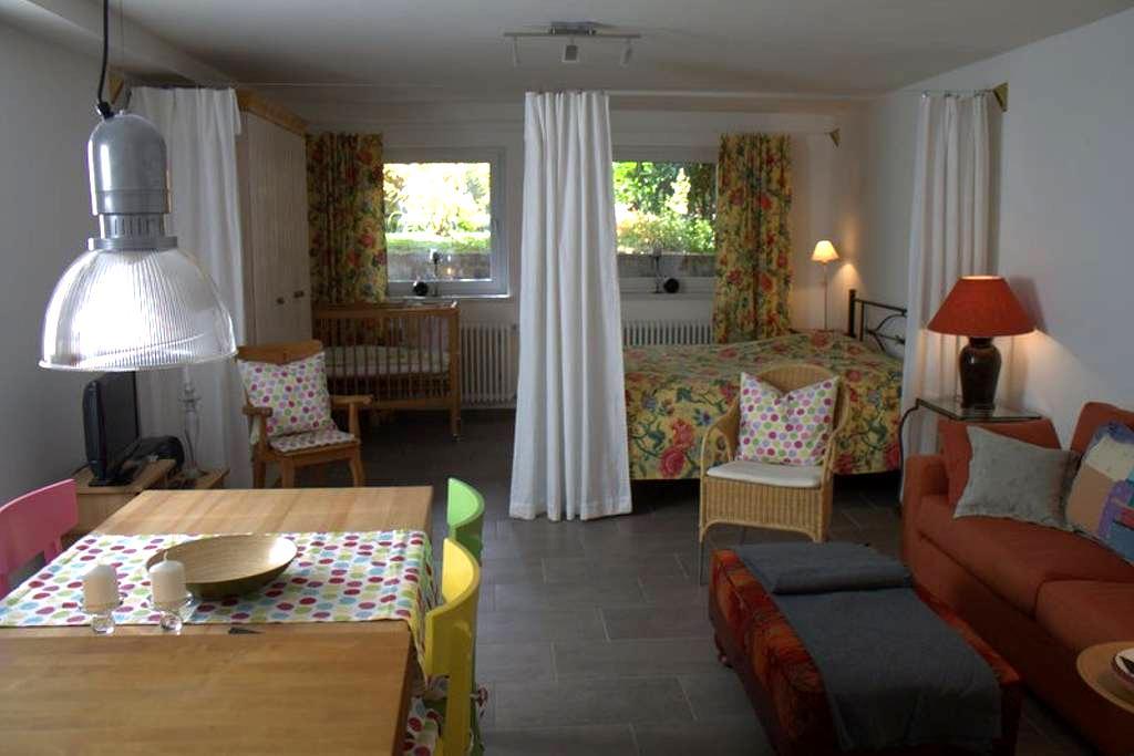 Komfortable 50 qm große 1-Zimmer Ferienwohnung - Vörstetten - Pis