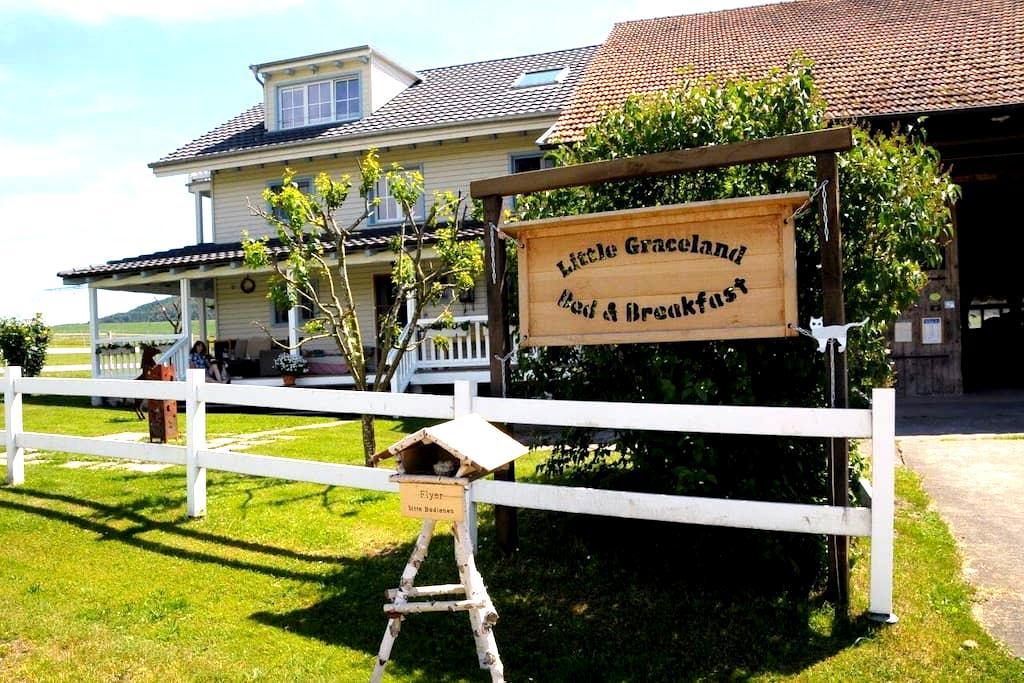 Little Graceland.. - Neunkirch