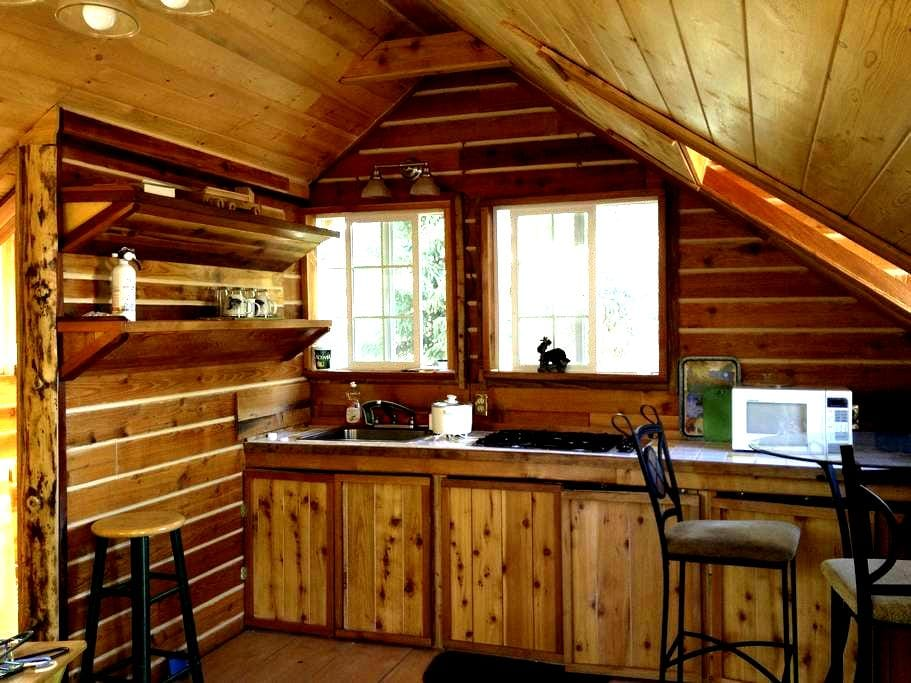 Private lake studio (URL HIDDEN) AK - Soldotna - Chalupa