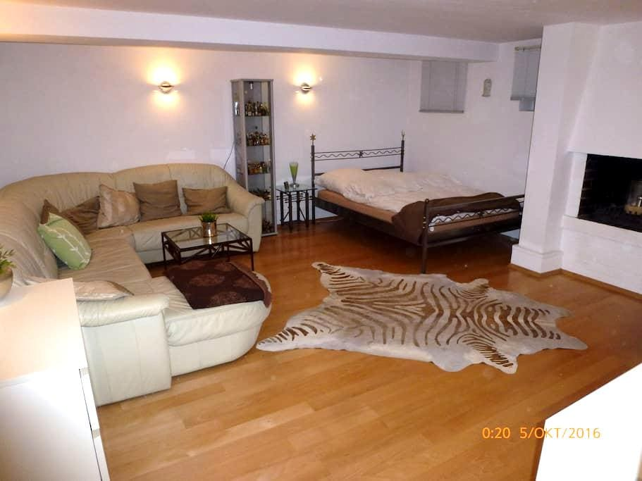 Großes Gästezimmer incl. Sauna u Gartenlounge - Andernach, Rheinland-Pfalz, DE - Casa