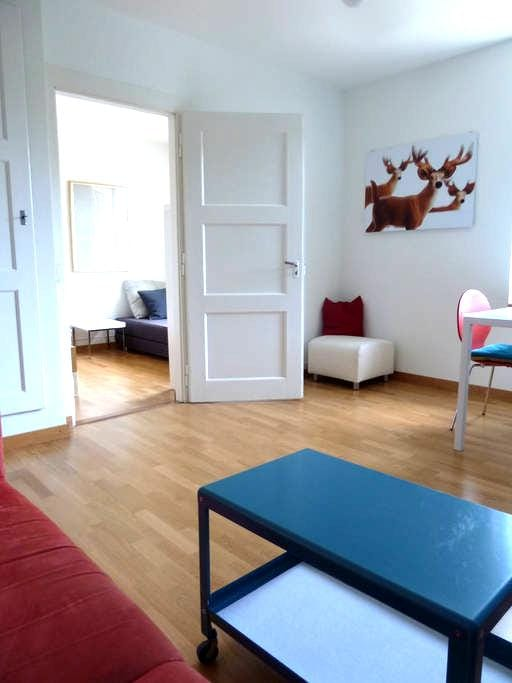 fully furnished appartment 1st fl. - Bern - Appartement