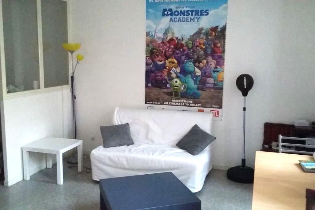 Studio 40m² à 100m de la Cathédrale - Clermont-Ferrand - Appartement