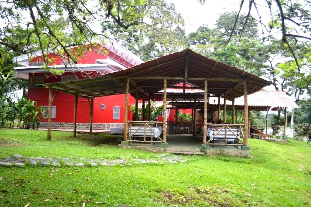 Charming Sarapiqui Hostel  - Puerto Viejo de Sarapiqui - Yatakhane