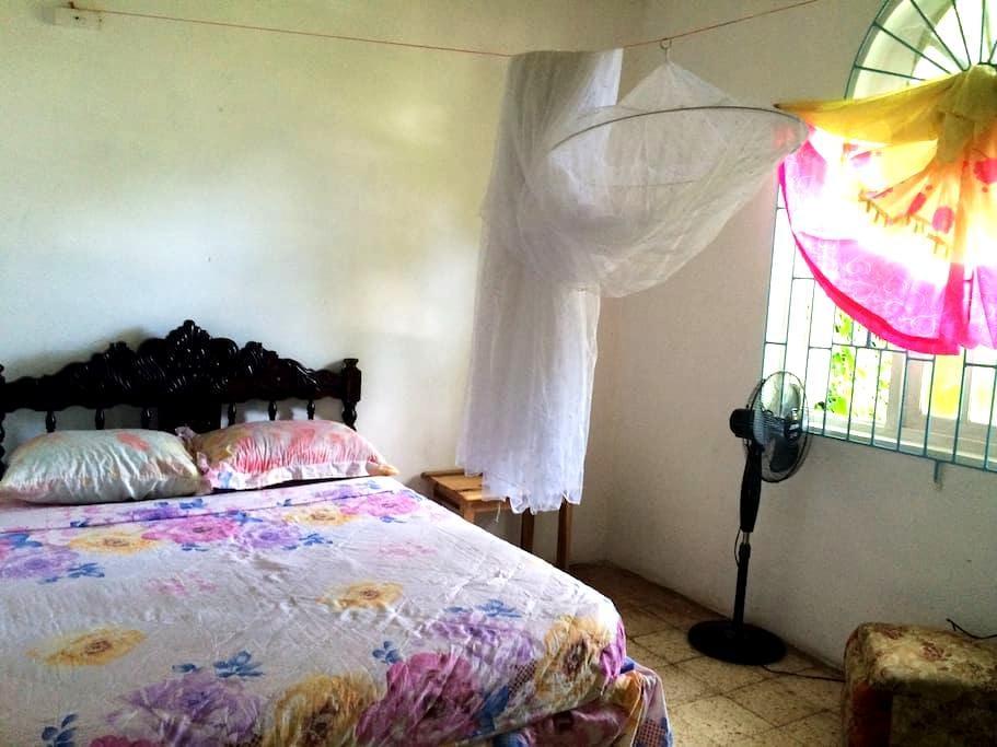 Rastaman Rev's Garden Hostel  room #2 - Port Antonio - House