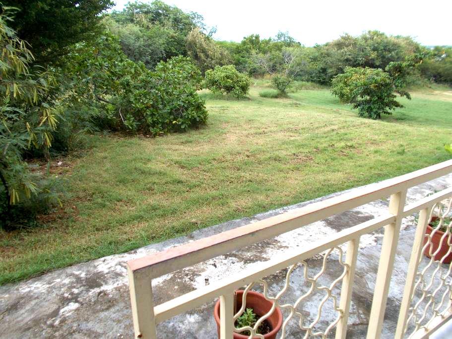 Guadeloupe location studio mer  - Anse-Bertrand - Haus
