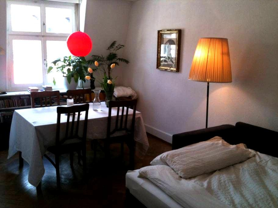 Cosy, quiet room close to Messe  - Basel - Leilighet
