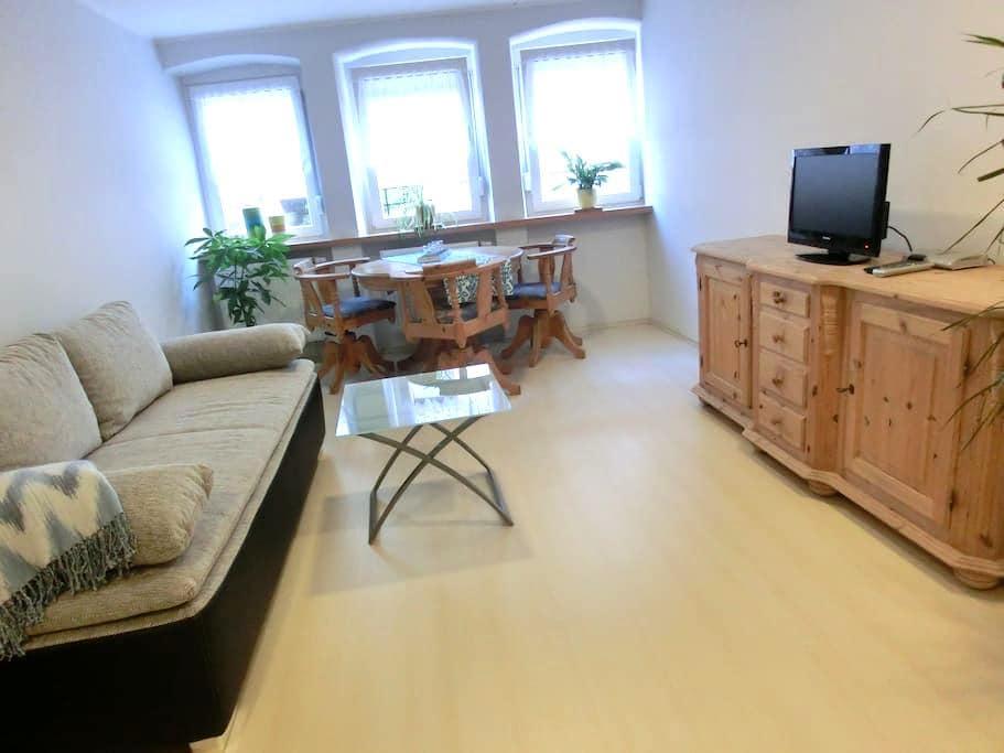 Schöne, helle Wohnung in Annweiler - Annweiler am Trifels - Apartemen