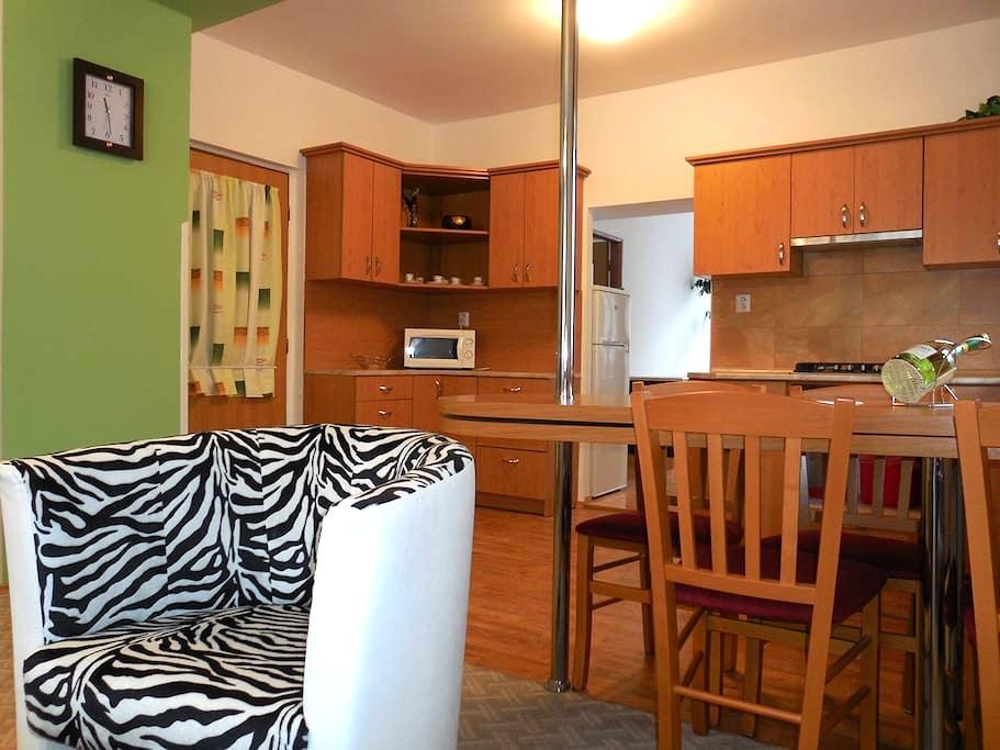 Apartment Blehovi 1 - Decin - Apartament