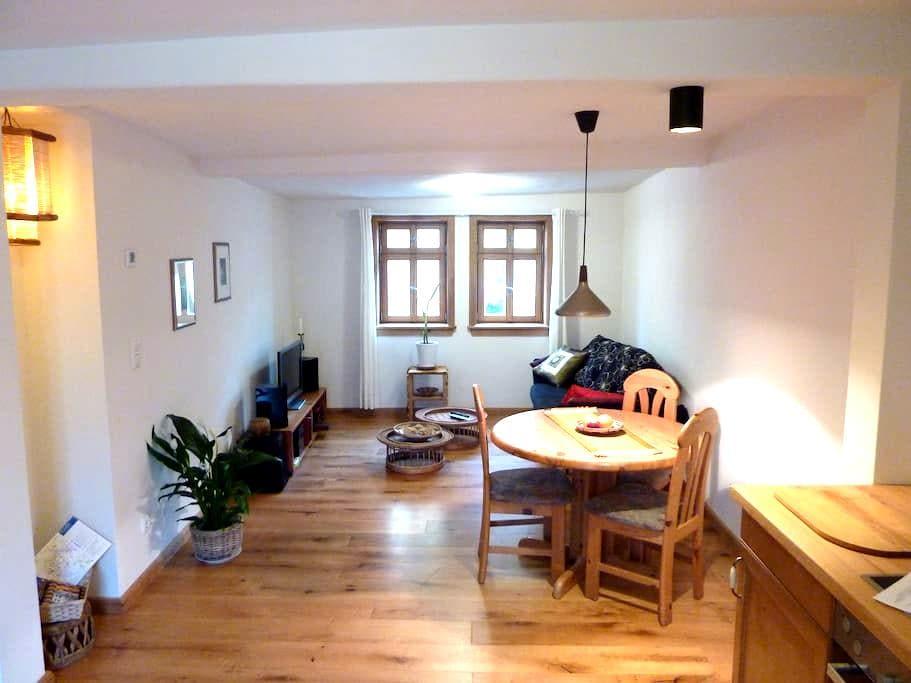 Zentral, Historisch, Ökologisch & Gemütlich!! - Fulda - Appartement