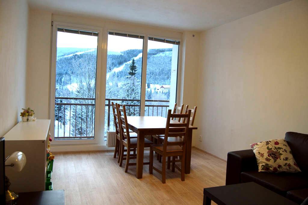 Family apartment Špindlerův Mlýn - Špindlerův Mlýn