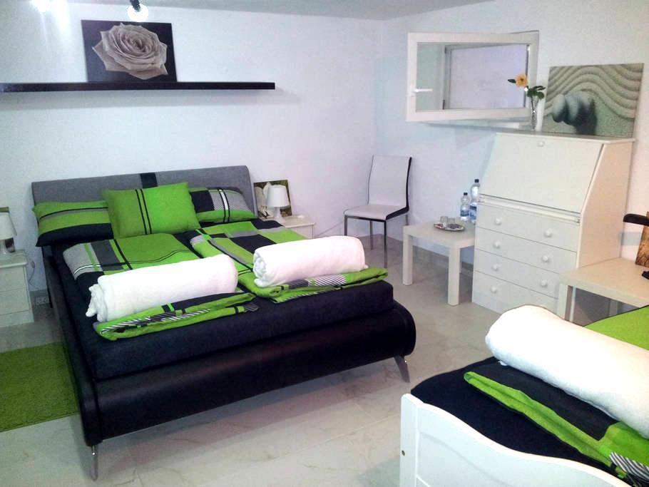 Praktisches Zimmer in Stadtnähe, ruhig am Waldrand - Bad Säckingen - Casa de hóspedes