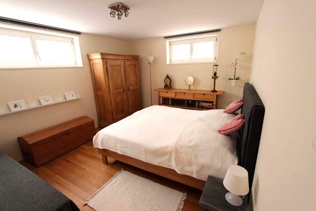 2-3 Zimmer Apartment in Einfamilienhaus für 1 - 7P - Muttenz