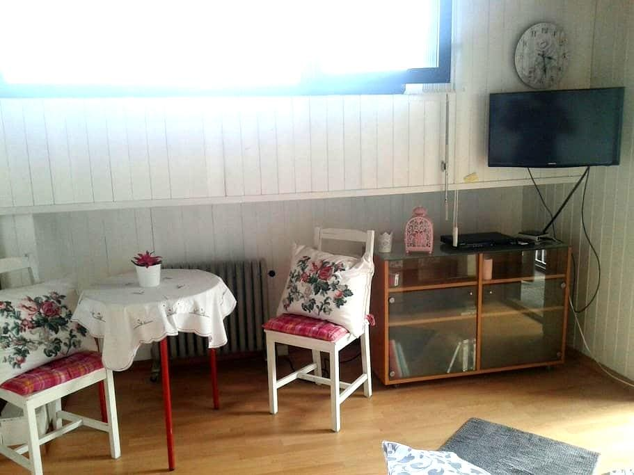Zimmer mit Bad und kleine küche . - Gordola - Apartment