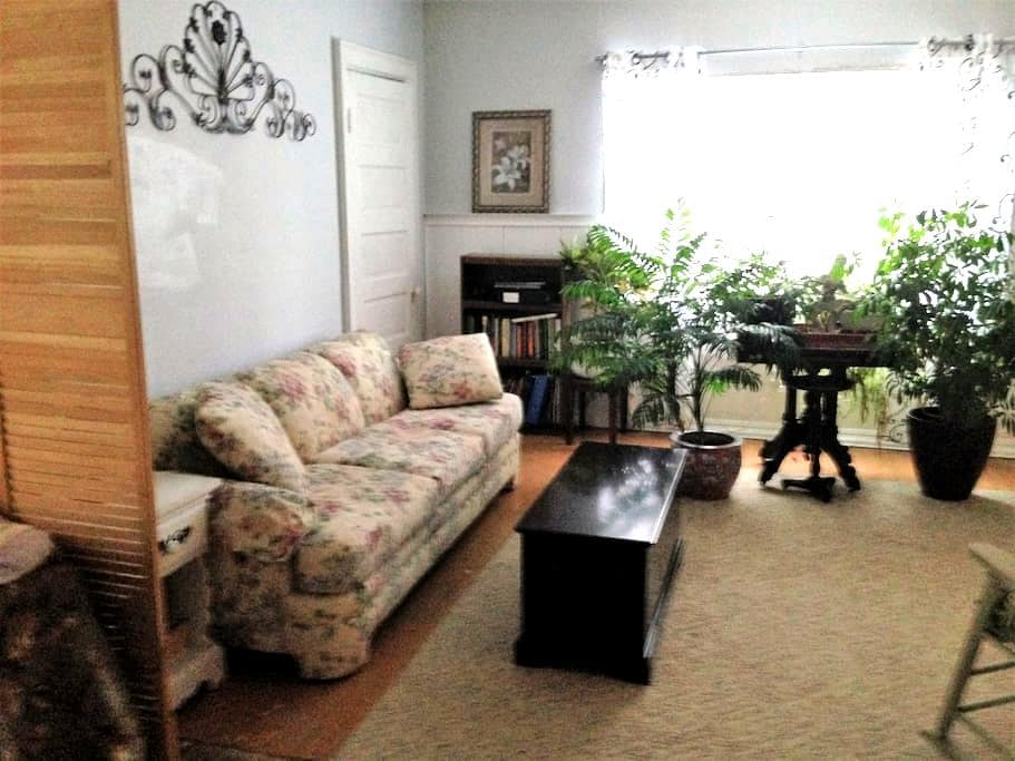 The Ideal apartment in Buffalo, New York - Buffalo - Apartamento