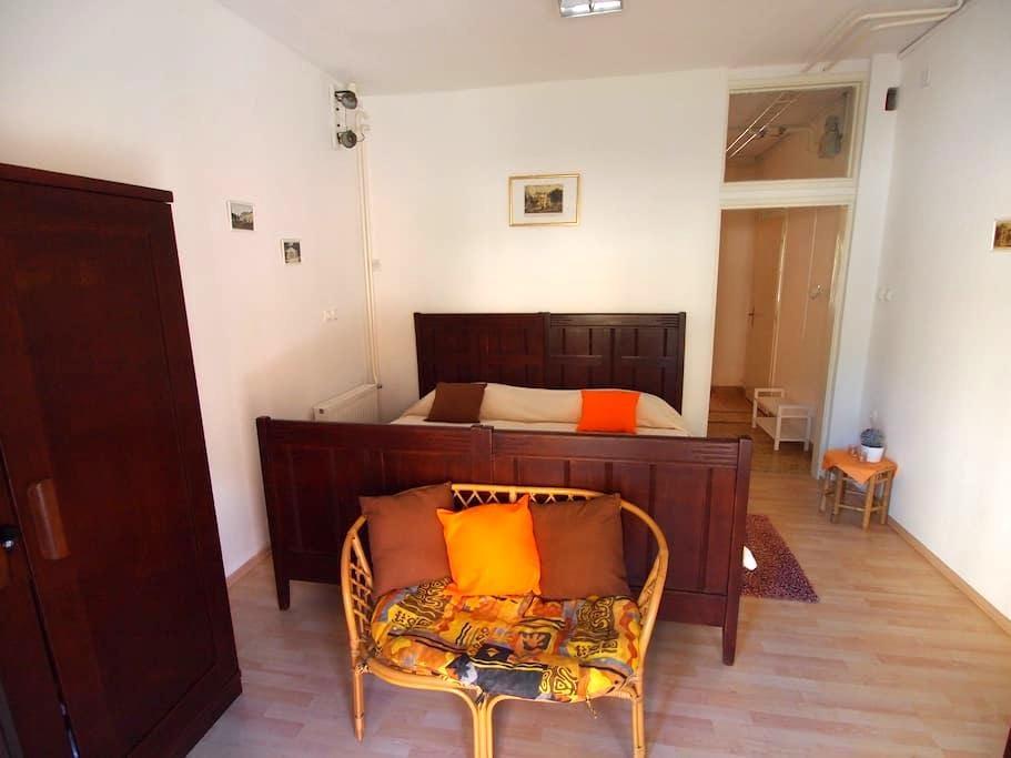 Apartment Fani in Rogaška Slatina - Rogaška Slatina - Pis