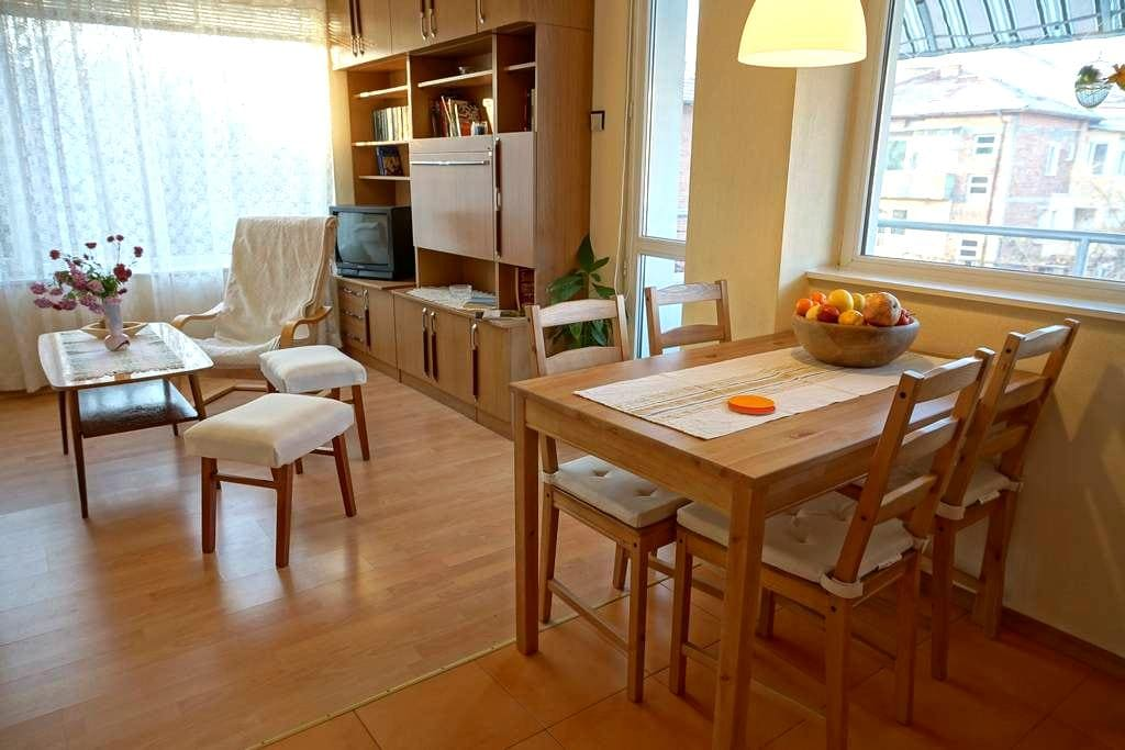 Quiet apartment near the city centr - Plovdiv - Huoneisto